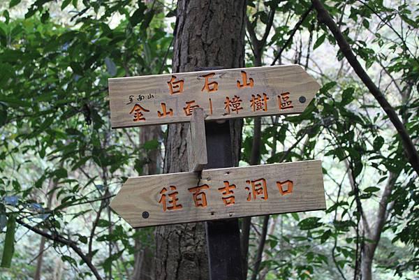 0108大溪白石山 (7).JPG