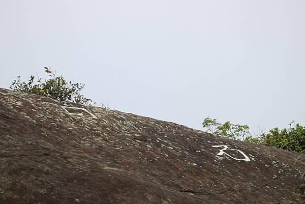 0108大溪白石山 (49).JPG