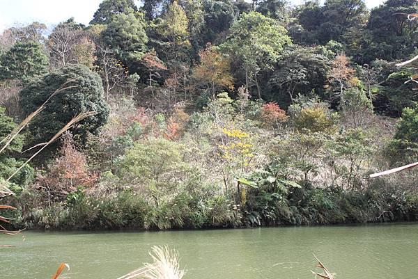 0108大溪白石山 (55).JPG