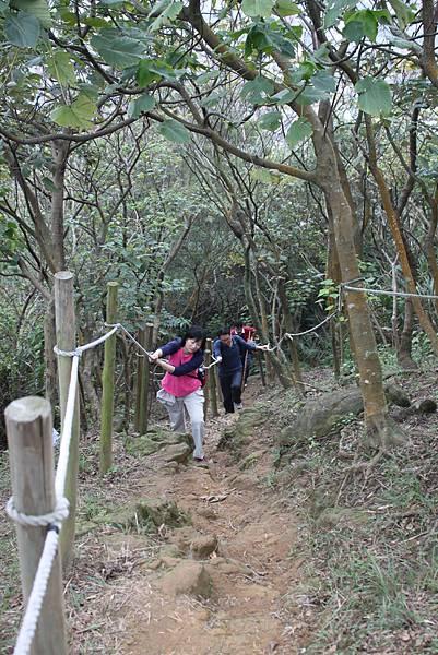 0114鶯歌石步道 (12).JPG