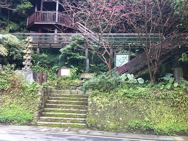 1010128土城天上山 (2).JPG