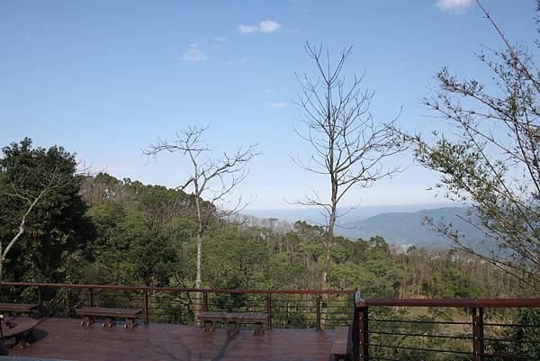 0205大山背山步道 (16).JPG