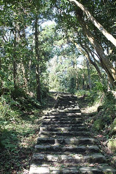 0205大山背山步道 (24).JPG