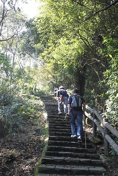 0205大山背山步道 (26).JPG