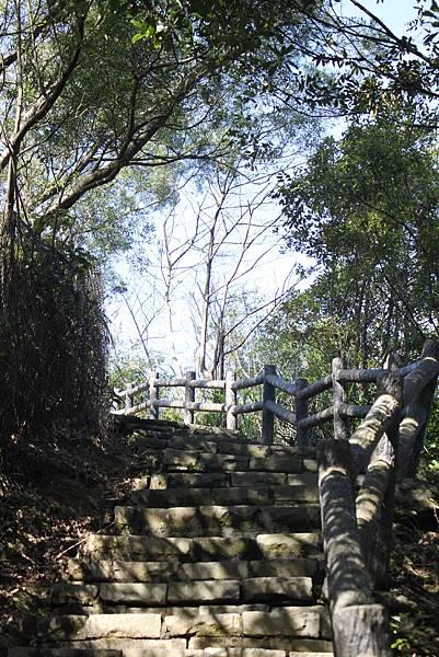 0205大山背山步道 (27).JPG