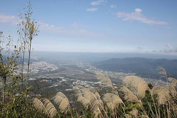 0205大山背山步道 (28).JPG