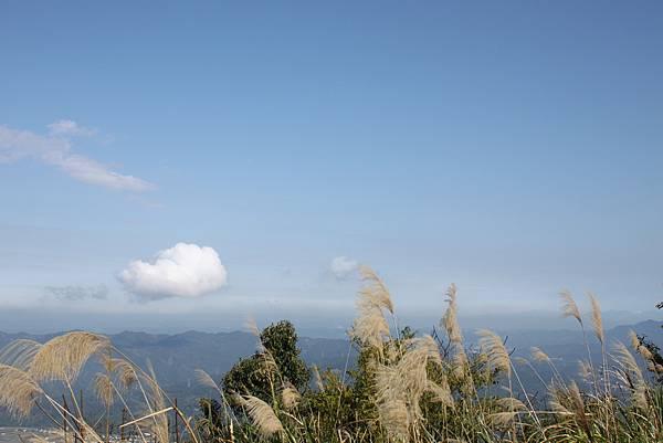 0205大山背山步道 (30).JPG