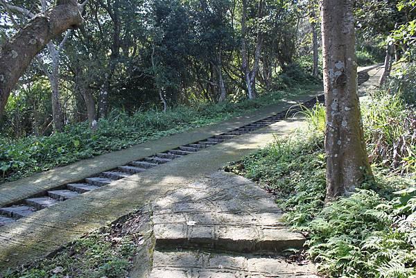 0205大山背山步道 (43).JPG
