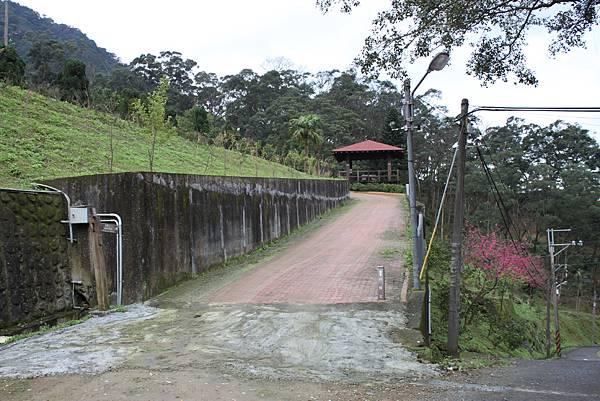0219聖母環山步道六寮崙山 (2)