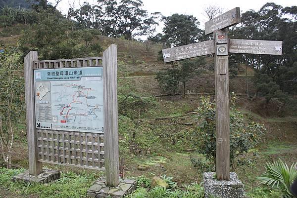 0219聖母環山步道六寮崙山 (4)