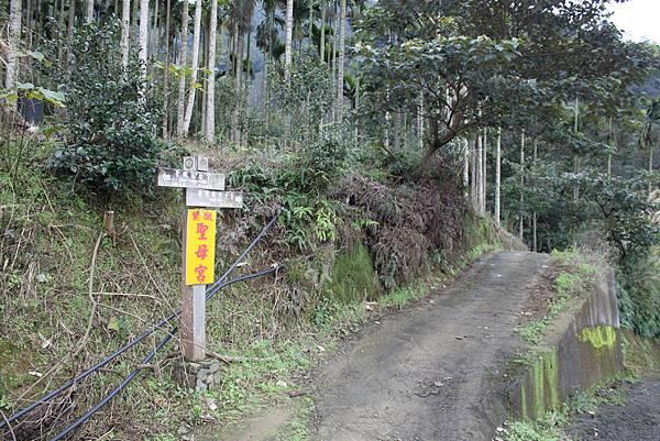 0219聖母環山步道六寮崙山 (10)