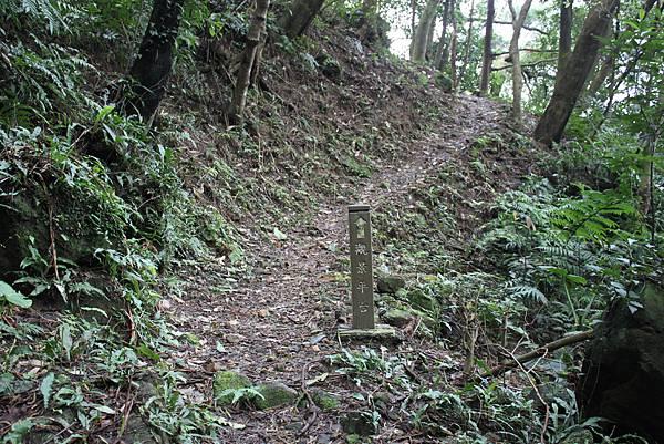0219聖母環山步道六寮崙山 (14)