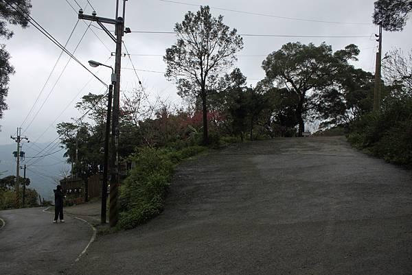 0219聖母環山步道六寮崙山 (23)