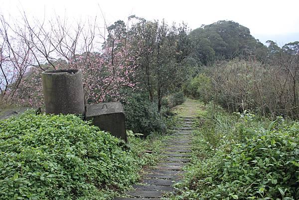 0219聖母環山步道六寮崙山 (26)