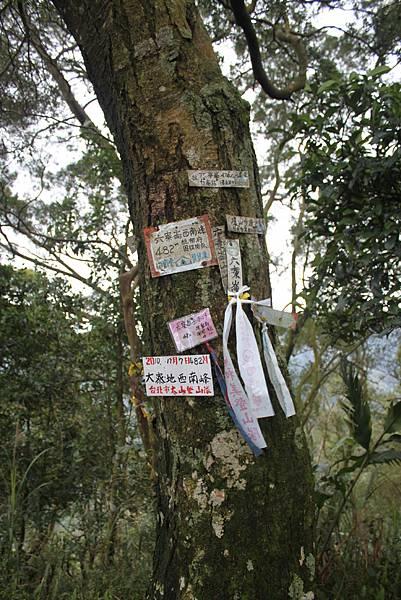 0219聖母環山步道六寮崙山 (29)