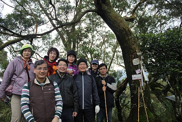 0219聖母環山步道六寮崙山 (33)