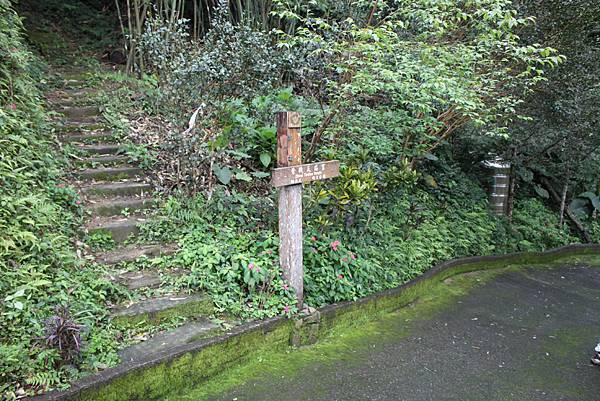 0219聖母環山步道六寮崙山 (48)