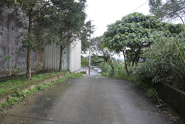 0219聖母環山步道六寮崙山 (50)