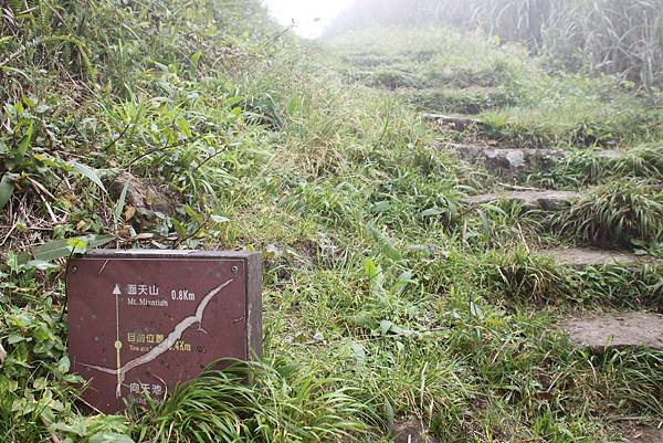 0318青天宮上面天山 (30)