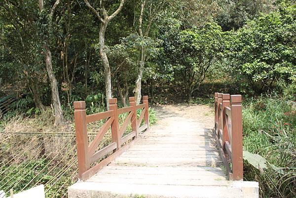 0404漫步土庫岳 (4)