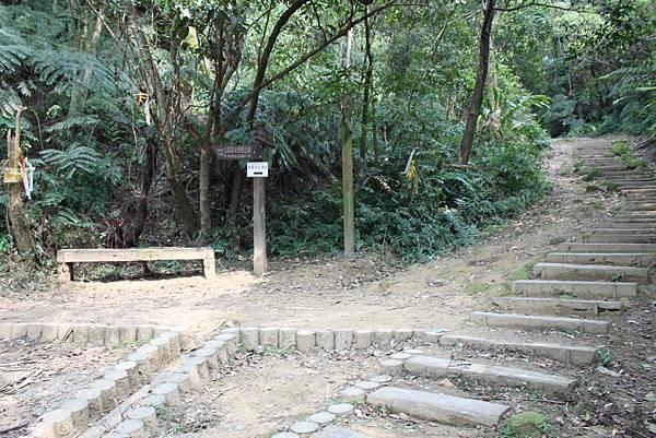 0404漫步土庫岳 (8)