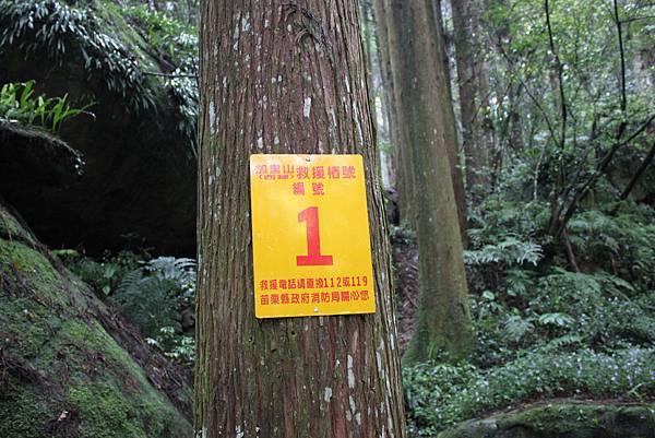 0407苗栗第一高山加里山 (9)
