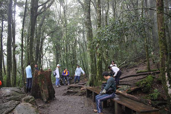 0407苗栗第一高山加里山 (41)