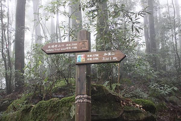 0407苗栗第一高山加里山 (43)