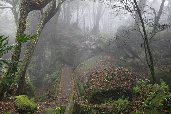 0407苗栗第一高山加里山 (44)