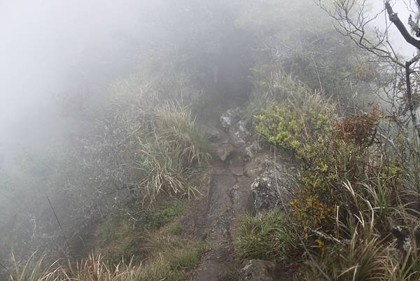 0407苗栗第一高山加里山 (70)