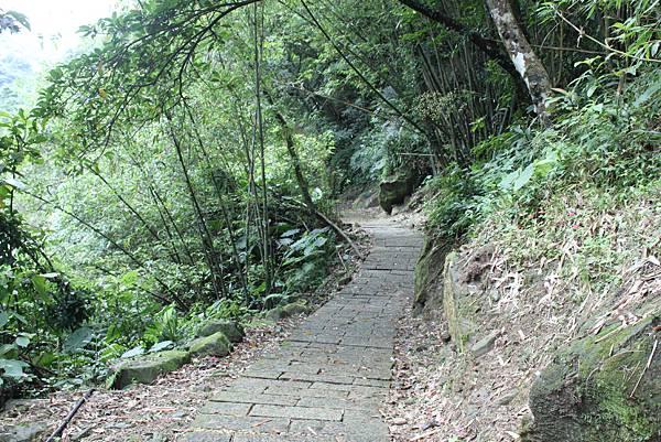 0429淡蘭古道接烏塗窟步道 (44)