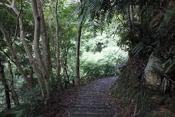 0617永安景觀步道及雲海山 (7)