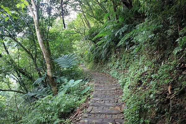 0617永安景觀步道及雲海山 (8)
