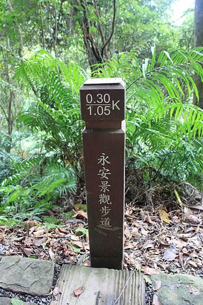 0617永安景觀步道及雲海山 (9)