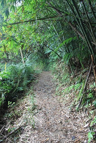 0617永安景觀步道及雲海山 (18)