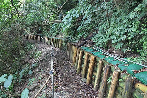 0617永安景觀步道及雲海山 (19)