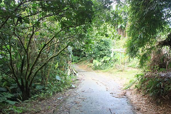 0617永安景觀步道及雲海山 (21)