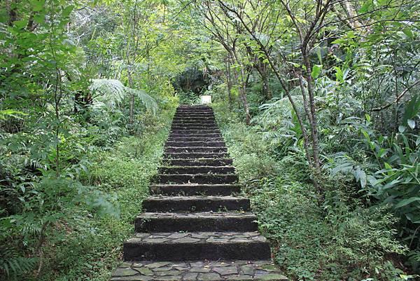 0617永安景觀步道及雲海山 (40)
