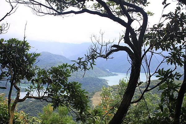 0617永安景觀步道及雲海山 (44)
