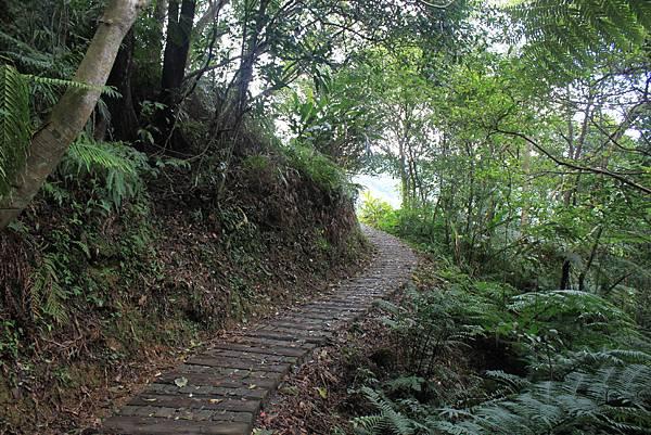 0617永安景觀步道及雲海山 (34)