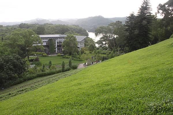 0623明德水庫薰衣草森林 (44)