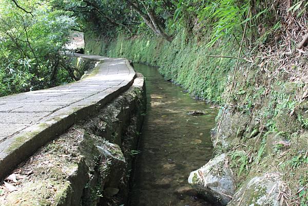 0722坪頂古圳親山步道 (41)