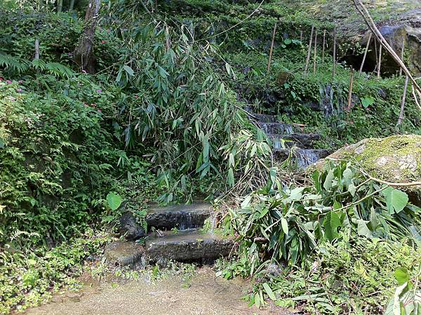 0804金龜岩及猴洞步道 (3)