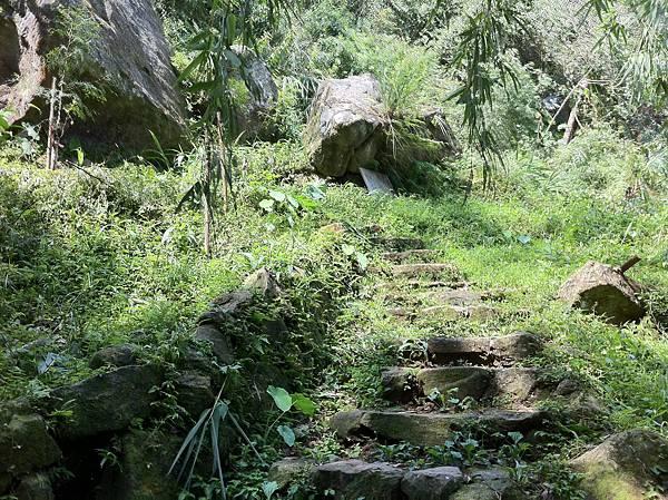 0804金龜岩及猴洞步道 (6)