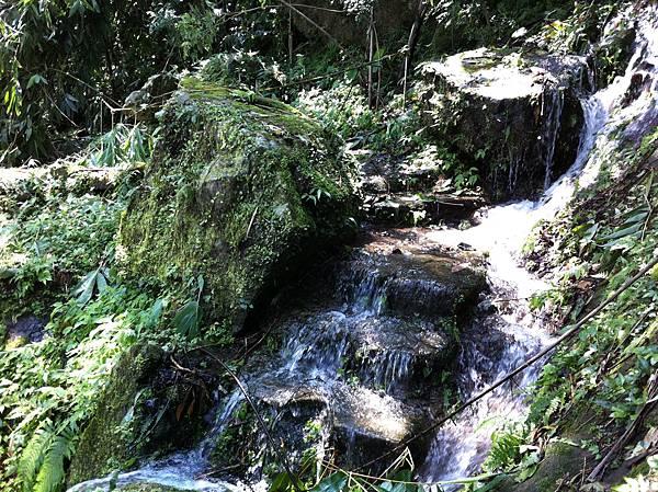 0804金龜岩及猴洞步道 (7)