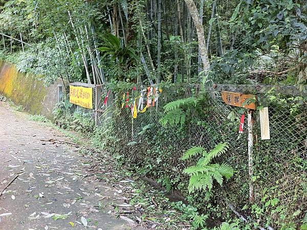 0804金龜岩及猴洞步道 (10)