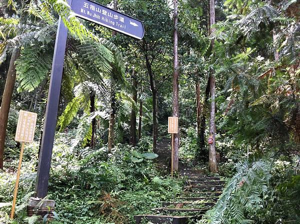 0804金龜岩及猴洞步道 (11)