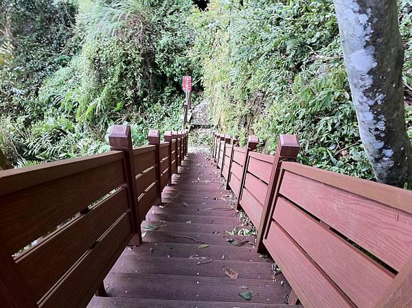 0804金龜岩及猴洞步道 (13)