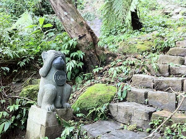 0804金龜岩及猴洞步道 (15)
