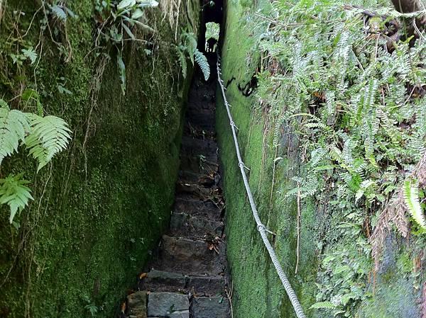 0804金龜岩及猴洞步道 (16)
